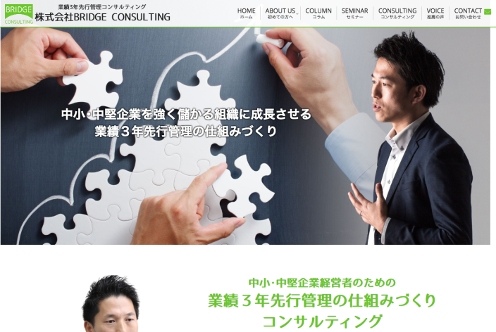 BRIDGE CONSULTING-web-pc